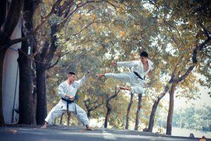 karate dubai