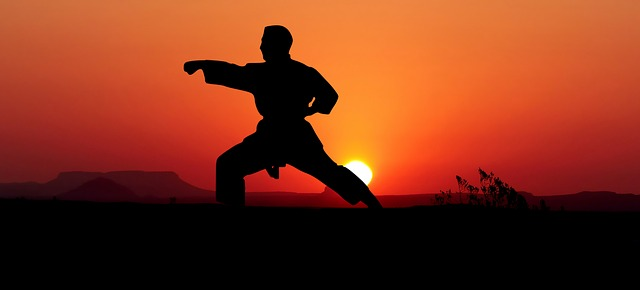 a man practicing karate at sunset