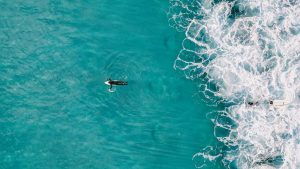 Surfing in Dubai aerial view of a surfer