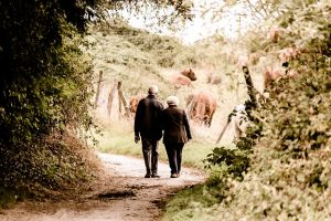 benefits of senior exercise routines