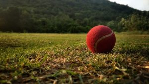 top 10 benefits of playing cricket
