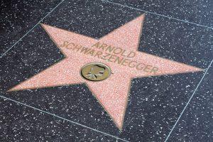 Schwarzenegger star