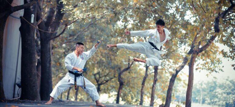 two man doing Karate